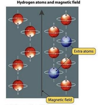 MRI Hydrogen Atoms