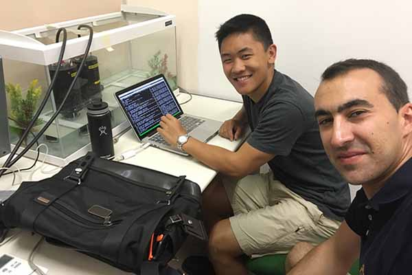 student and mentor at computer engineering lab